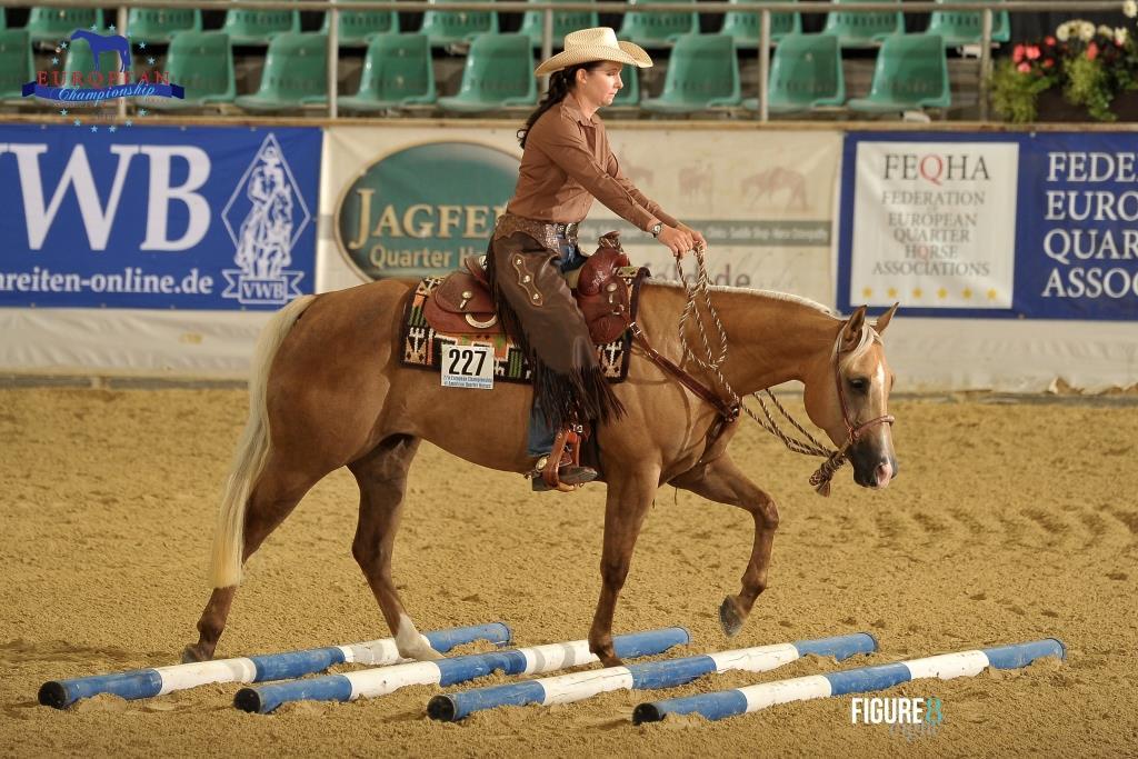 Vogelsgesang Equine Consulting